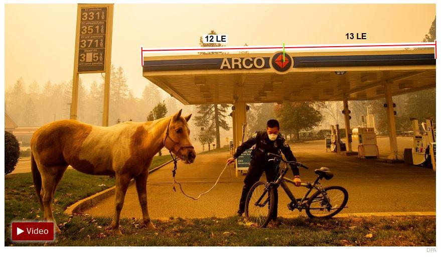 Kalifornien-Waldbrände Pferd-13-12-fin