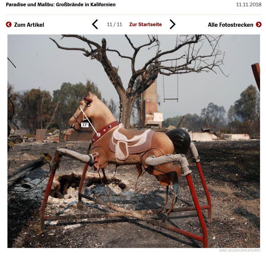 Kalifornien-Waldbrände Pferd-2-fin